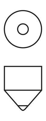 BOSCH Gloeilamp, interieurverlichting (1 987 302 210)